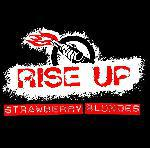 STRAWBERRY BLONDES: STRAWBERRY BLONDES - Rise up