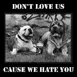 Don't love us cause we hate you - brachiale HC 7